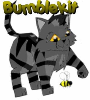 Bumbly little Bumblekit by Jayie-The-Hufflepuff