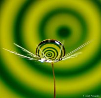 Spiral swirl in Green and Yellow by lindahabiba