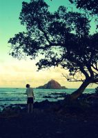 Alau Island at Maui and a stunned human being by Wunderling