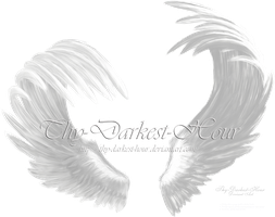 Airbrushed Wings White - Matched by Thy-Darkest-Hour