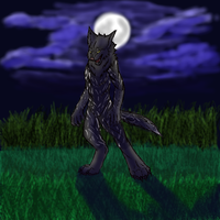 Tulio werewolf form by larissa-the-hanyou
