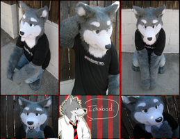 Ichabod the wolf by Phar0s