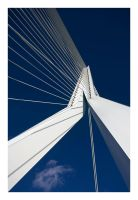 Erasmus Bridge by pho-bic