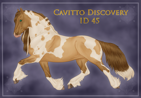 Cavitto Discovery 45 by ThatDenver