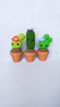 Pet Cacti by milliemouse579