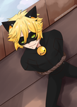 Bound Chat Noir by YoruFox