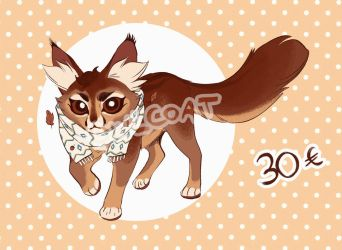 Warrior Cat Adoptable (SOLD) + INFO by OwlCoat