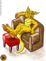 Yellow Roo by Lysozyme