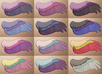 Pony wing color concepts by SparkleMongoose
