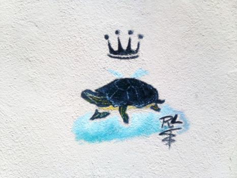 TURTLE!!! by Rachey827
