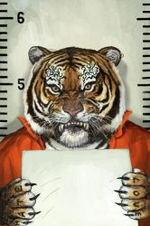 Animal Rights - Tiger by adijin