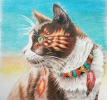 Cat portrait by mich-spich