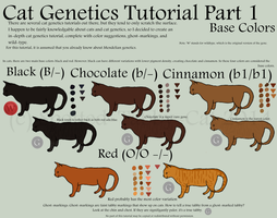 Cat Genetics Tutorial Part 1 (Base Colors) by Spotted-Tabby-Cat