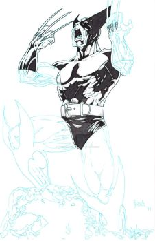 Wolverine WIP2 by TyndallsQuest
