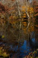 Remnant of Color by BlackRoomPhoto