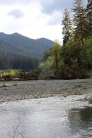 Hoh river 4 by seancfinnigan