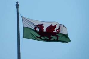 Welsh Flag Flying Over Conwy Castle by rlkitterman