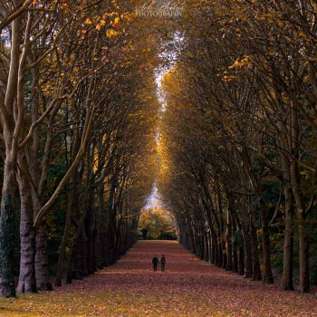 Together along the way... by Seb-Photos