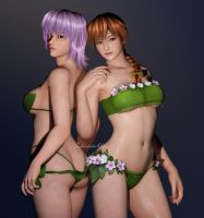 Dead or Alive Venus Vacation - Kasumi and Ayane