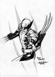 Wolverine - rising stars 2011 by SpiderGuile