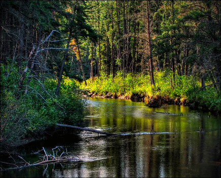Slow River Bend by wb-skinner