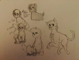 Doggie/cat Doodles  by Ailizerbee08