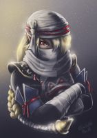 Hyrule Warriors - Sheik by Emeraldus
