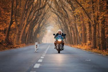 A girl, her bike and her dog by Lain-AwakeAtNight