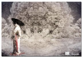 Geisha by bhrphotographs