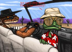 This is bat country by Ravenfire5