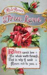 Language of Flowers - Red Roses, True Love by Yesterdays-Paper