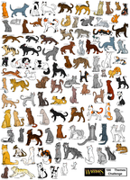 100 Cats Challange Finished by Daisyvayle