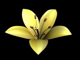 3D Lily Stock (download) by WandaRocket
