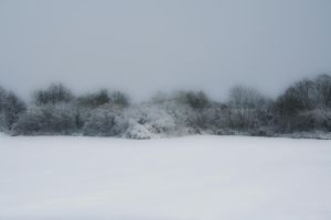 Winterscape 04 by CD-STOCK by CD-STOCK