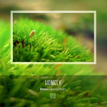 Homely - Wallpaper by limav