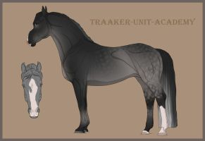 Traaker Import 40 |CUSTOM| Kittycat by Pashiino