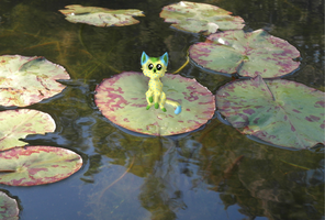 Softfeather On A Lilypad by DashingPegasus