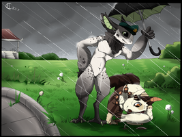 MAY NEW OWNER PROMPT - Through rain and wind by The-Ringo-Zebra