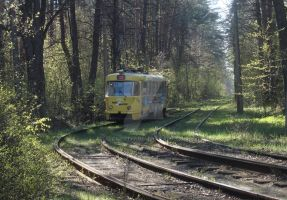 Tram in the spring forest by aloner777