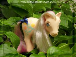 Pony of the Month June 2013 by LarraChersan