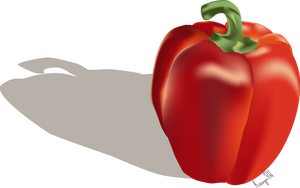 Red Bell Pepper - Illustrator Gradient Practice by KarynRH