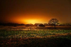 Light at night by apfe