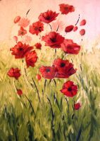 Poppies by VitaG