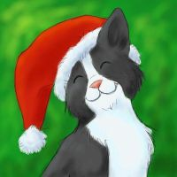 Christmas cat with Christmas hat by Angua85