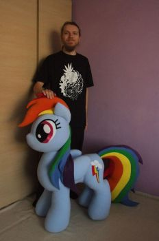 Rainbow Dash V5 plush lifesize with me by adamar44
