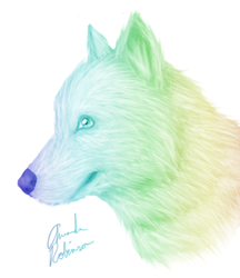 Rainbow Wolf by QueerCoyote