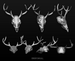 Deer skull by Matylly