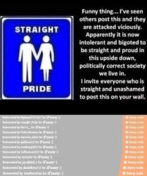 Straight pride by ninjawerr