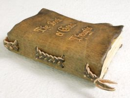 Pocket Size Leather Book by gildbookbinders