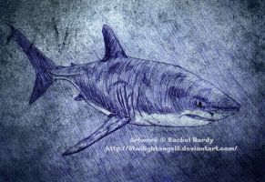 Great White Shark by 8TwilightAngel8